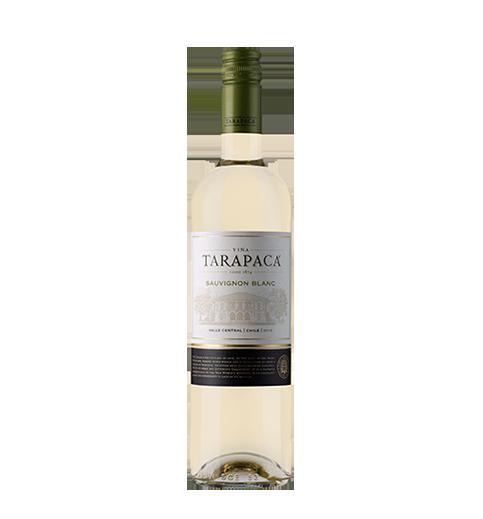 tarapaca sauvignon blanc the boogaloo bali